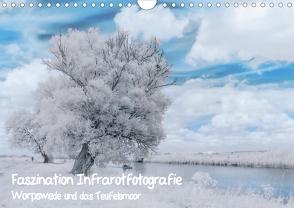 Faszination Infrarotfotografie (Wandkalender 2020 DIN A4 quer) von Arndt,  Maren