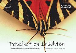 Faszination Insekten von Zerr,  Katharina, Zerr,  Sibylle