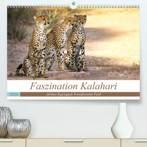 Faszination Kalahari (Premium, hochwertiger DIN A2 Wandkalender 2020, Kunstdruck in Hochglanz) von Woyke,  Wibke