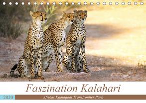 Faszination Kalahari (Tischkalender 2020 DIN A5 quer) von Woyke,  Wibke