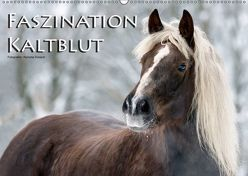 Faszination Kaltblut (Wandkalender 2019 DIN A2 quer) von Dünisch - www.Ramona-Duenisch.de,  Ramona
