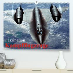 Faszination Kampfflugzeuge (Premium, hochwertiger DIN A2 Wandkalender 2020, Kunstdruck in Hochglanz) von Stanzer,  Elisabeth