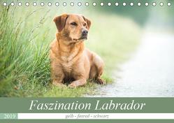 Faszination Labrador – gelb, foxred, schwarz (Tischkalender 2019 DIN A5 quer) von Strunz,  Cornelia