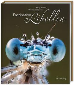 Faszination Libellen von BÖHME,  Ferry