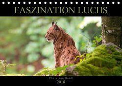 Faszination Luchs (Tischkalender 2018 DIN A5 quer) von www.chphotography.de,  k.A.