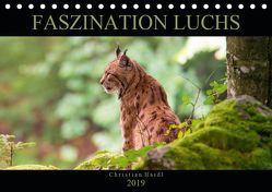 Faszination Luchs (Tischkalender 2019 DIN A5 quer)