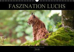 Faszination Luchs (Wandkalender 2018 DIN A3 quer) von www.chphotography.de,  k.A.