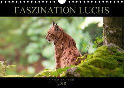 Faszination Luchs (Wandkalender 2018 DIN A4 quer) von www.chphotography.de,  k.A.