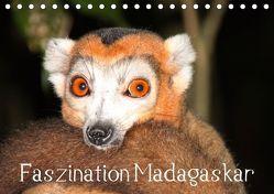 Faszination Madagaskar (Tischkalender 2019 DIN A5 quer) von Raab,  Karsten-Thilo