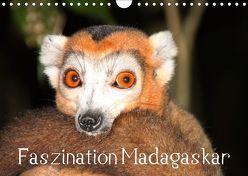 Faszination Madagaskar (Wandkalender 2019 DIN A4 quer) von Raab,  Karsten-Thilo