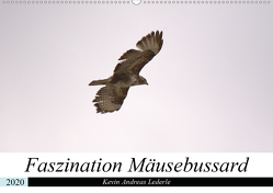 Faszination Mäusebussard (Wandkalender 2020 DIN A2 quer) von Andreas Lederle,  Kevin