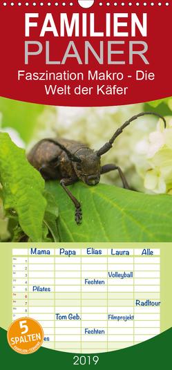 Faszination Makro – Die Welt der Käfer – Familienplaner hoch (Wandkalender 2019 , 21 cm x 45 cm, hoch) von Potratz,  Andrea