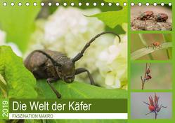 Faszination Makro – Die Welt der Käfer (Tischkalender 2019 DIN A5 quer) von Potratz,  Andrea