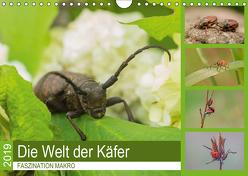 Faszination Makro – Die Welt der Käfer (Wandkalender 2019 DIN A4 quer) von Potratz,  Andrea