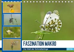 Faszination Makro – Die Welt der Schmetterlinge (Tischkalender 2019 DIN A5 quer) von Potratz,  Andrea