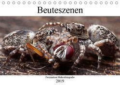 Faszination Makrofotografie: Beuteszenen (Tischkalender 2019 DIN A5 quer) von Mett Photography,  Alexander