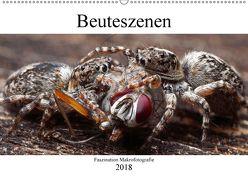 Faszination Makrofotografie: Beuteszenen (Wandkalender 2018 DIN A2 quer) von Mett Photography,  Alexander
