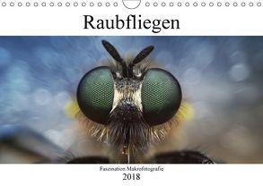Faszination Makrofotografie: Raubfliegen (Wandkalender 2018 DIN A4 quer) von Mett Photography,  Alexander