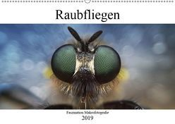 Faszination Makrofotografie: Raubfliegen (Wandkalender 2019 DIN A2 quer) von Mett Photography,  Alexander