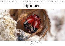 Faszination Makrofotografie: Spinnen (Tischkalender 2018 DIN A5 quer) von Mett Photography,  Alexander