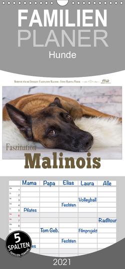 Faszination Malinois – Familienplaner hoch (Wandkalender 2021 , 21 cm x 45 cm, hoch) von Wrede,  Martina