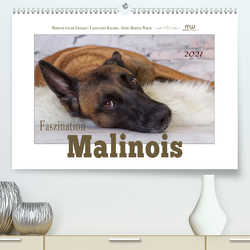Faszination Malinois (Premium, hochwertiger DIN A2 Wandkalender 2021, Kunstdruck in Hochglanz) von Wrede,  Martina