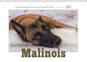 Faszination Malinois (Wandkalender 2018 DIN A3 quer) von Wrede,  Martina