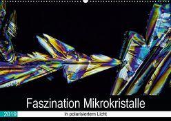 Faszination Mikrokristalle in polarisiertem Licht (Wandkalender 2019 DIN A2 quer) von Becker,  Thomas