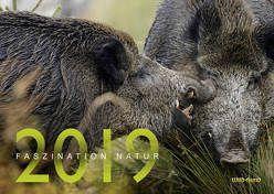Faszination Natur Kalender 2019