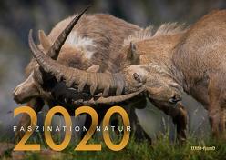 Faszination Natur Kalender 2020
