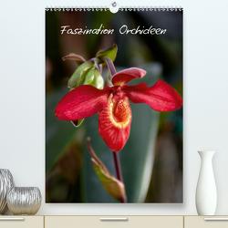 Faszination Orchideen (Premium, hochwertiger DIN A2 Wandkalender 2021, Kunstdruck in Hochglanz) von Rix,  Veronika