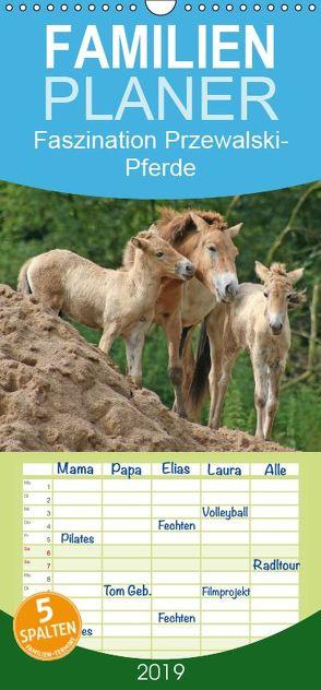 Faszination Przewalski-Pferde – Familienplaner hoch (Wandkalender 2019 , 21 cm x 45 cm, hoch) von Lindert-Rottke,  Antje