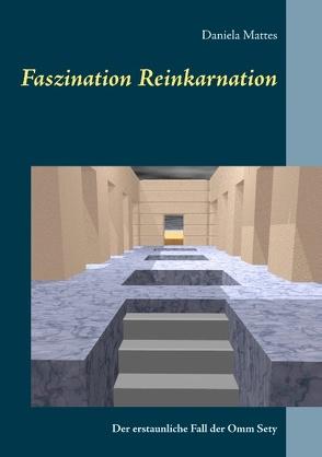 Faszination Reinkarnation von Mattes,  Daniela