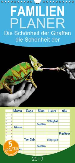 Faszination Reptilien – Familienplaner hoch (Wandkalender 2019 , 21 cm x 45 cm, hoch) von Photo - Jakob Stute,  Stute