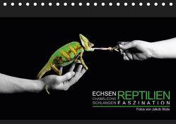 Faszination Reptilien (Tischkalender 2019 DIN A5 quer) von Photo - Jakob Stute,  Stute