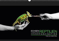 Faszination Reptilien (Wandkalender 2019 DIN A3 quer) von Photo - Jakob Stute,  Stute