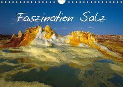 Faszination Salz (Wandkalender 2018 DIN A4 quer) von Lange,  Fred