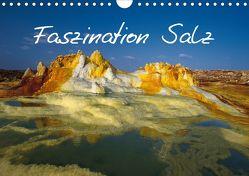 Faszination Salz (Wandkalender 2020 DIN A4 quer) von Lange,  Fred