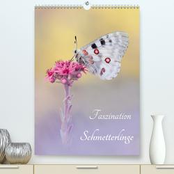 Faszination Schmetterlinge (Premium, hochwertiger DIN A2 Wandkalender 2021, Kunstdruck in Hochglanz) von Kraschl,  Marion