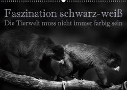 Faszination schwarz-weiß – Die Tierwelt muss nicht immer farbig sein (Wandkalender 2020 DIN A2 quer) von Swierczyna,  Eleonore