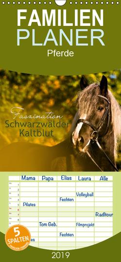 Faszination Schwarzwälder Kaltblut – Familienplaner hoch (Wandkalender 2019 , 21 cm x 45 cm, hoch) von HomSi-Fotos