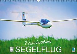 Faszination Segelflug (Wandkalender 2018 DIN A3 quer) von CALVENDO,  k.A.