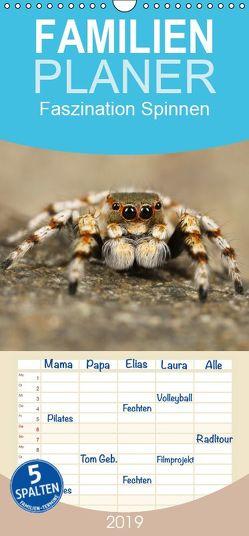 Faszination Spinnen – Familienplaner hoch (Wandkalender 2019 , 21 cm x 45 cm, hoch) von Stanzer,  Elisabeth