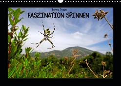 Faszination Spinnen (Wandkalender 2019 DIN A3 quer) von Trapp,  Benny
