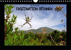 Faszination Spinnen (Wandkalender 2019 DIN A4 quer) von Trapp,  Benny