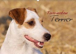 Faszination Terrier (Wandkalender 2018 DIN A2 quer) von Gerlach,  Nadine
