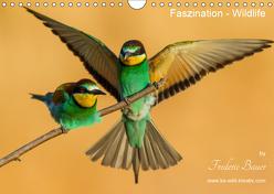 Faszination – Wildlife (Wandkalender 2019 DIN A4 quer) von Bauer,  Frederic
