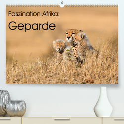 Faszinaton Afrika: Geparde (Premium, hochwertiger DIN A2 Wandkalender 2020, Kunstdruck in Hochglanz) von Weiß,  Elmar