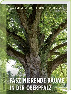Faszinierende Bäume in der Oberpfalz von Schuller,  Jürgen
