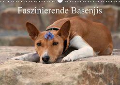 Faszinierende Basenjis (Wandkalender 2018 DIN A3 quer) von Joswig,  Angelika